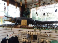 """And here's the """"13 Foot Gator""""...they never said is was a live gator, yo!"""